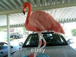 Giant Jumbo Huge (stand up) plush stuffed FLAMINGO BIRD 45