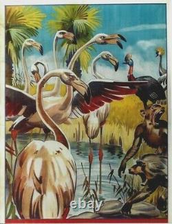 Original vintage poster PINK FLAMINGOS & MONKEYS WILDLIFE c. 1930