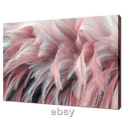 Pink Coral Flamingo Bird Feather Canvas Wall Art Print Picture Ready To Hang